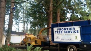 Machinery wood-chipping limbs removed by tree crew during tree thinning services.