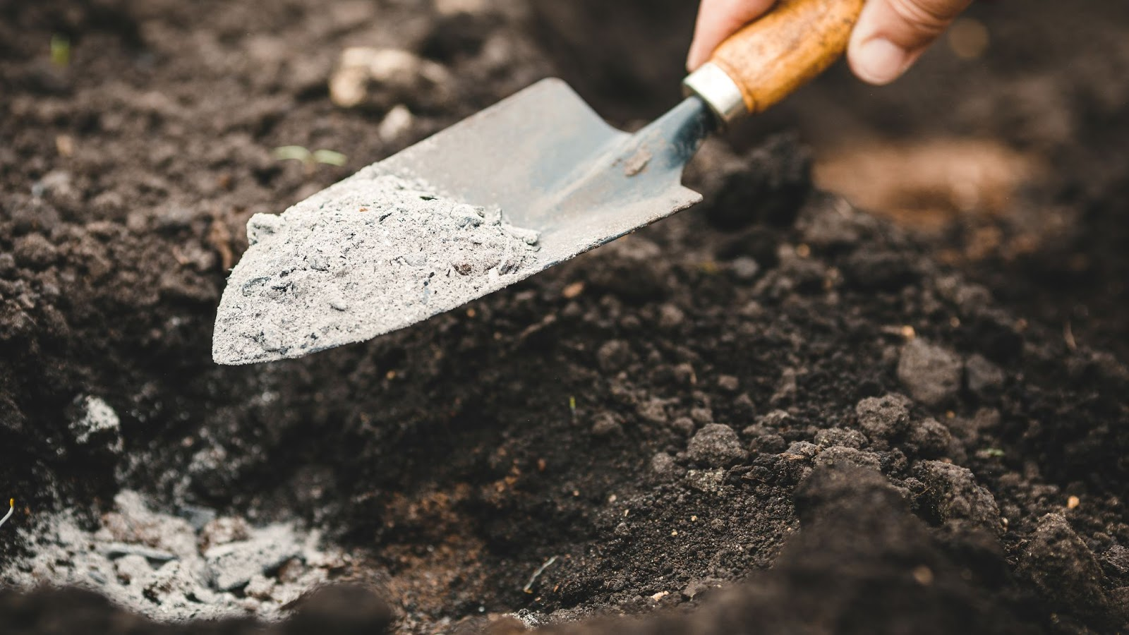 Image of a hand using a garden trowel during tree fertilization services to add gray powdered fertilizer into a hole in brown soil.