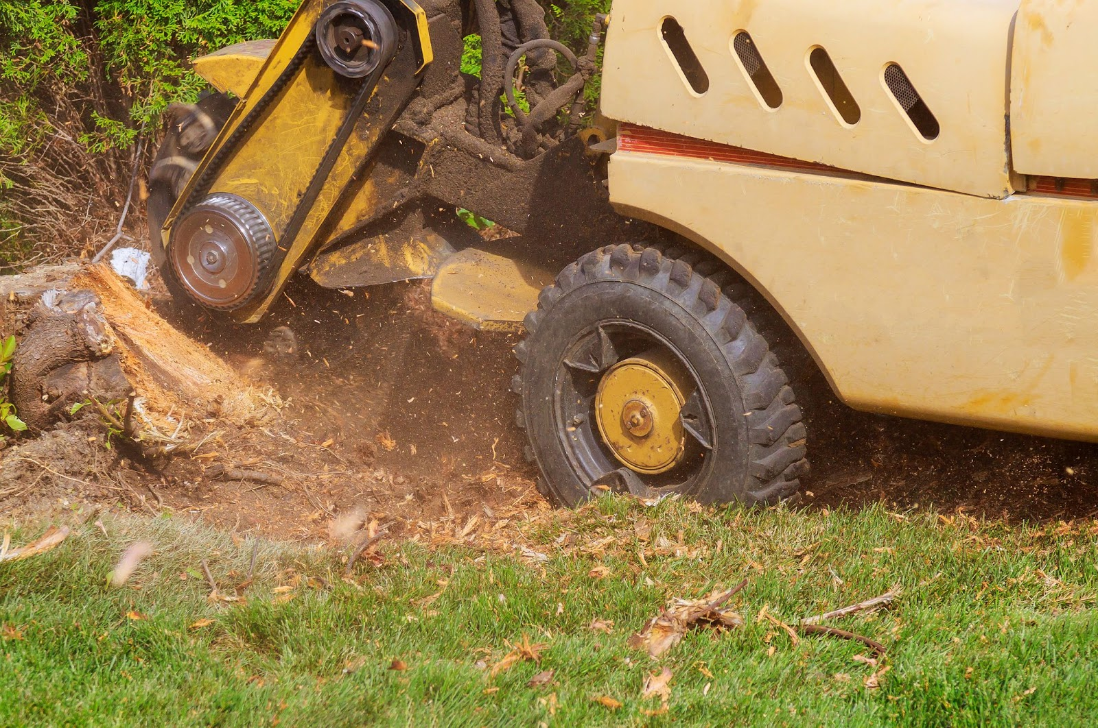 Image of machinery performing stump grinding services.